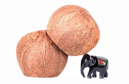 """daremny: SÅ'oÅ"""" wspieranie kokosowego na gÅ'owie Zdjęcie Seryjne"""