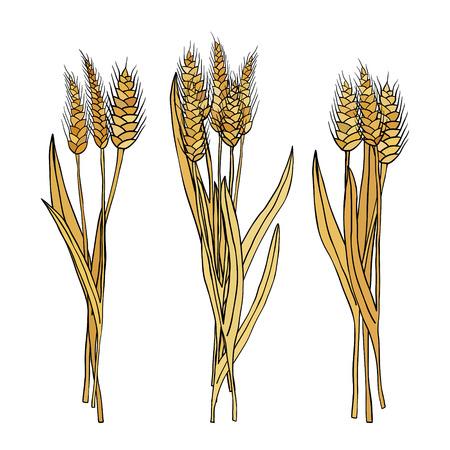 Vettore serie di covoni di grano cartone animato Doodle Archivio Fotografico - 61458710