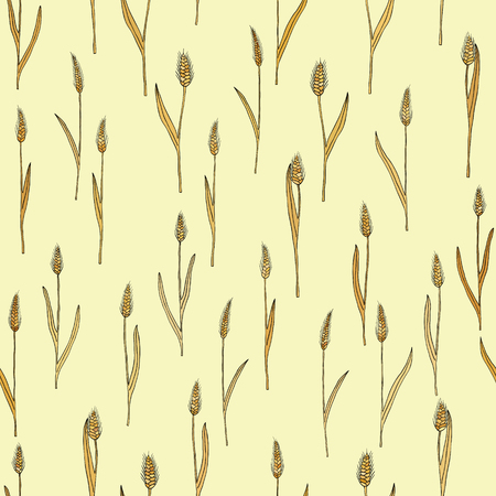 spikes: vector seamless pattern with of cartoon doodle wheat spikes Illustration