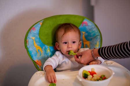feeding baby - cute baby boy eating chocolate