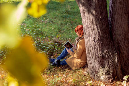 Young girl sitting under a tree in autumn park with tablet Stockfoto