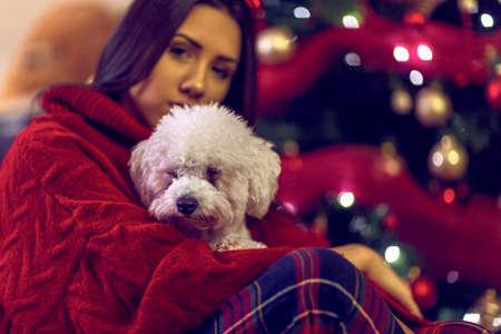 cute puppy for Christmas gift.Smiling  girl embracing cute dog. Banco de Imagens