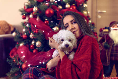 smiling young girl embracing cute puppy at Christmas holiday Standard-Bild