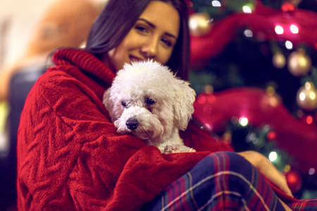 cute dog for Christmas gift.Smiling  girl embracing cute dog.