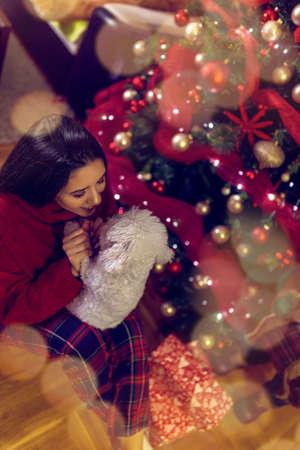 smiling girl are playing with dog, Christmas holiday.Christmas gifts Standard-Bild