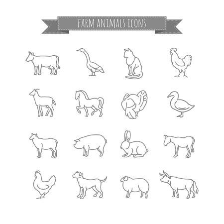 horse cock: farm animals vector thin line icons set for your design Illustration