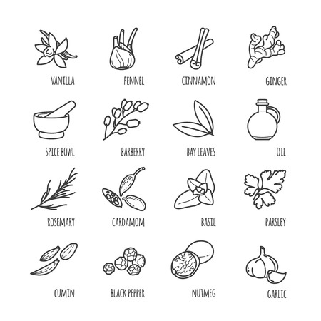 Spices and seasonings thin line web icons Иллюстрация