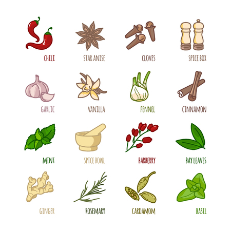 Spices and seasonings outline web icons set