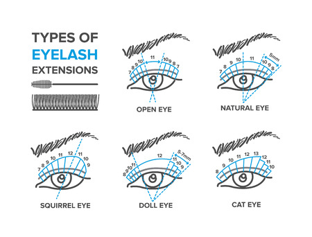 Types of eyelash extensions. Illustration for your design