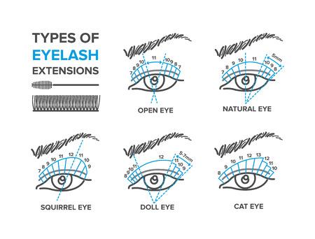 Types d'extensions de cils. Illustration pour votre conception Vecteurs