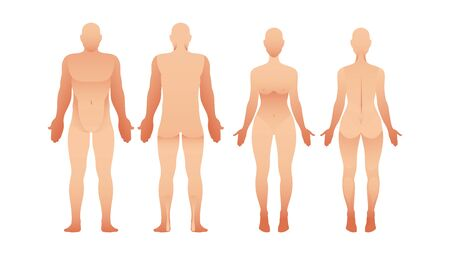Silhouettes of man and woman front and back view. Vector human body