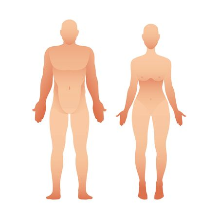 Silhouettes of man and woman front view. Vector human body Illustration