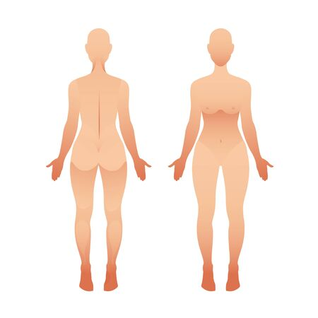 Silhouettes of woman front and back view. Vector female body