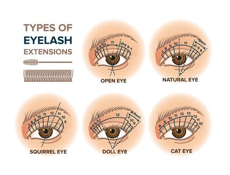 Types of eyelash extensions illustration for your design