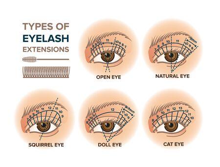 Types of eyelash extensions illustration for your design Vektoros illusztráció