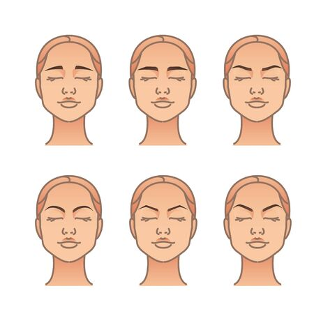 Woman face with different eyebrow forms. Vector illustration set Illustration