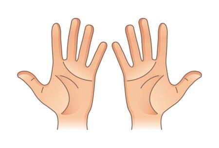 Części ciała ludzkiego. Ręce płci męskiej i żeńskiej. Lewo i prawo Ilustracje wektorowe