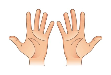 Parties du corps humain. Mains masculines et féminines. Gauche et droite Vecteurs