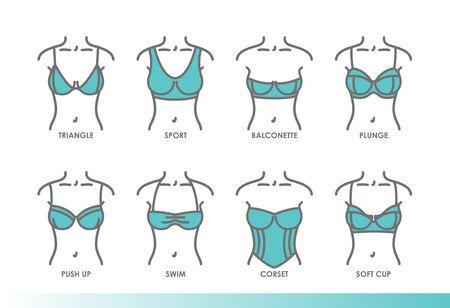 Types of bras. Kinds of bras. Womens underwear illustrations Illustration