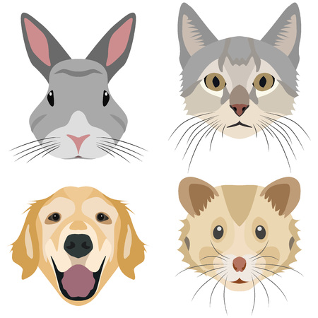 Collection of domestic animal heads for the creative use in graphic design