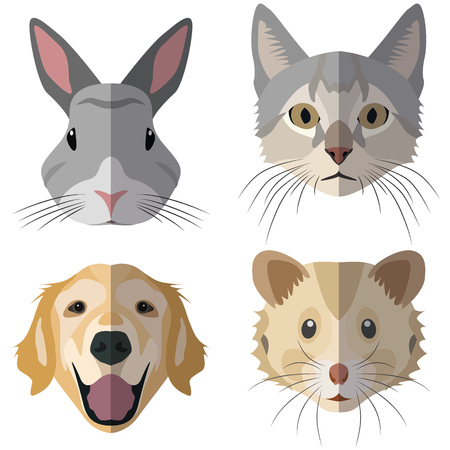 guinea pig: Collection of domestic animal heads for the creative use in graphic design