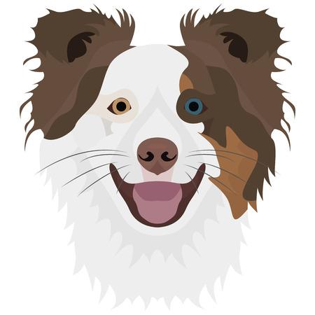 Dog Border Collie voor grafisch ontwerp