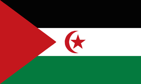 Detailed Illustration National Flag Democratic Arab Republic