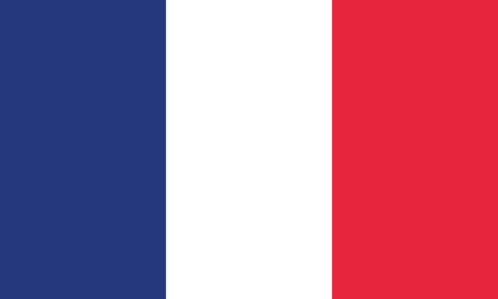 Detailed Illustration National Flag France