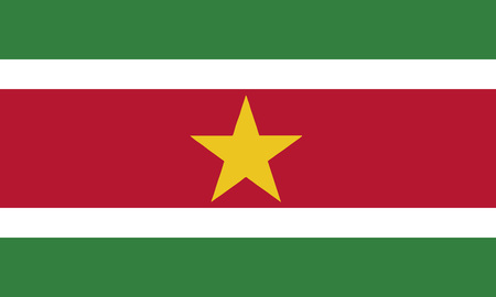 Detailed Illustration National Flag Suriname 일러스트