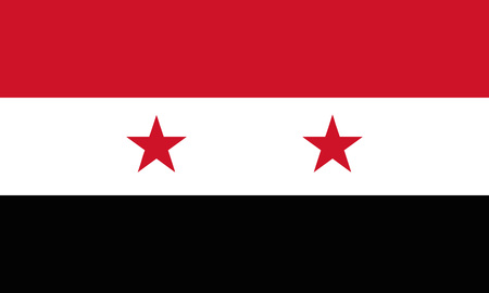 Detailed Illustration National Flag Syria