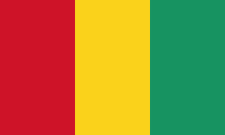 Detailed Illustration National Flag Guinea 일러스트
