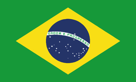 Detailed Illustration National Flag Brazil