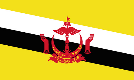 Detailed Illustration National Flag Brunei