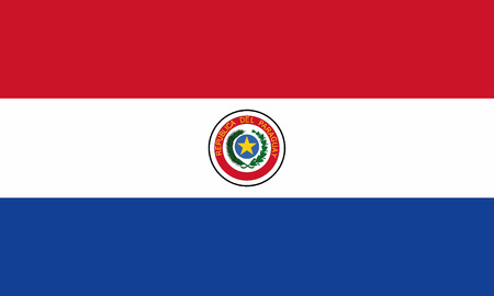 Detailed Illustration National Flag Paraguay 일러스트