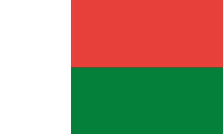 Detailed Illustration National Flag Madagascar 일러스트