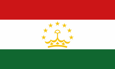 Detailed Illustration National Flag Tajikistan 일러스트