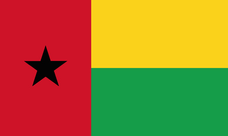 Detailed Illustration National Flag Guinea-Bissau 일러스트