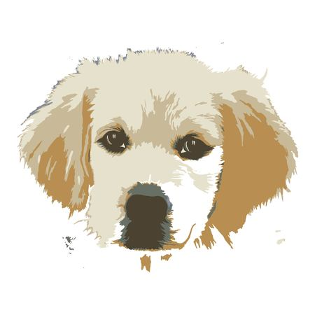 Creative drawing golden retriever. Art inspires people. This drawing of a dog is a great design for the graphic design. Artistically inspired the illustration.