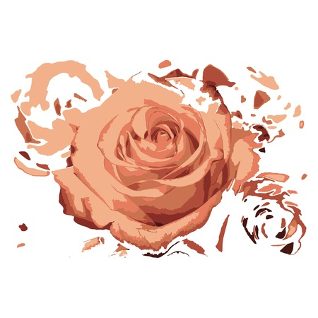 Creative drawing rose. Art inspires people. This drawing of a rose is a great design for the graphic design. Artistically inspired the illustration.