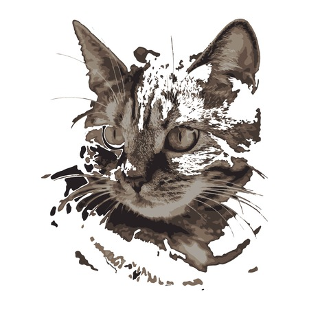 Creative drawing cat. Art inspires people. This drawing of a cat is a great design for the graphic design. Artistically inspired the illustration.