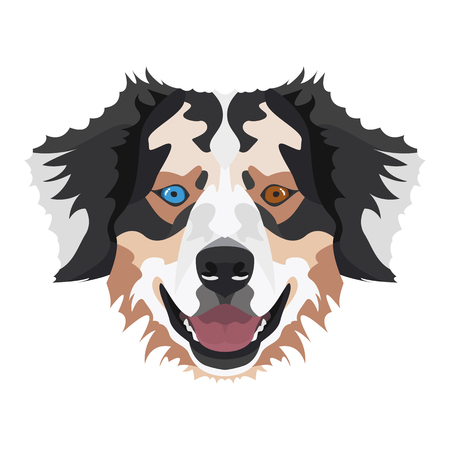 Illustration Australian Shepherd | For all Dog owners. What you love about his dog? Puppy dog eyes, wagging tail, smiling, barking. The Australian Shepherd is man's best friend. Illustration