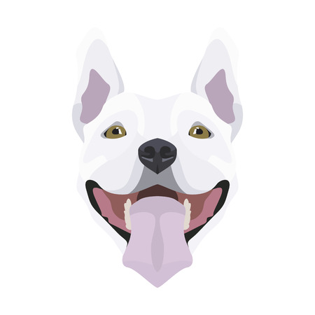 Illustration Bull Terrier | For all Dog owners. What you love about his dog? Puppy dog eyes, wagging tail, smiling, barking. The Bull Terrier is a man's best friend.
