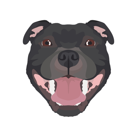 Illustration Staffordshire Bull Terrier | For all dog owners. What you love about his dog? Puppy dog ​​eyes, wagging tail, smiling, barking. The Staffordshire Bull Terrier is a man's best friend. Illustration