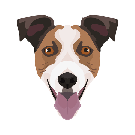 Illustration Jack Russell Terrier | For all Dog owners. What you love about his dog? Puppy dog eyes, wagging tail, smiling, barking. The Jack Russell Terrier is a man's best friend.