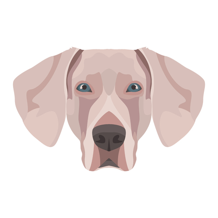 Illustration Weimaraner | For all dog owners. What you love about his dog? Puppy dog eyes, wagging tail, smiling, barking. The Weimaraner is a mans best friend. Illustration