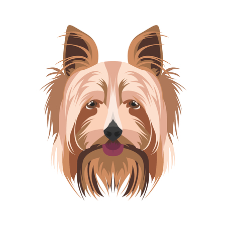 Illustration Yorkshire Terrier | For all dog owners. What you love about his dog? Puppy dog ​​eyes, wagging tail, smiling, barking. The Yorkshire Terrier is a mans best friend.