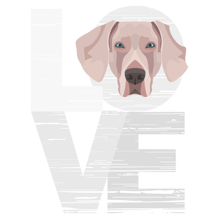 Love Weimaraner - A dogs head with the word love. The dog is mans best friend and is loved as a pet.