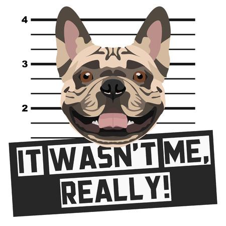 Illustration Mugshot French Bulldog - The guilty dog gets a police photo. Dog lovers and dog fans love them sassy dog. Illustration