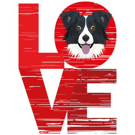 Love Border Collie - A dogs head with the word love. The dog is mans best friend and is loved as a pet. Ilustração