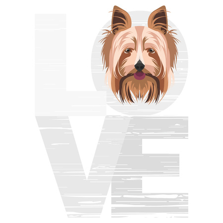 Love Yorkshire Terrier - A dogs head with the word love. The dog is mans best friend and is loved as a pet.